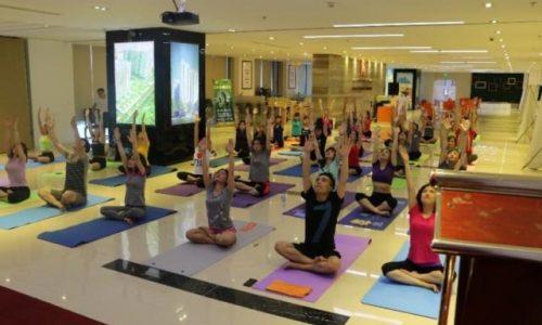 HẢI PHÁT GROUP: Tổ chức tập Yoga vì sức khỏe CBCNV